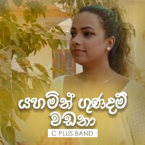 C Plus Band